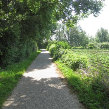 Maasheggengebied